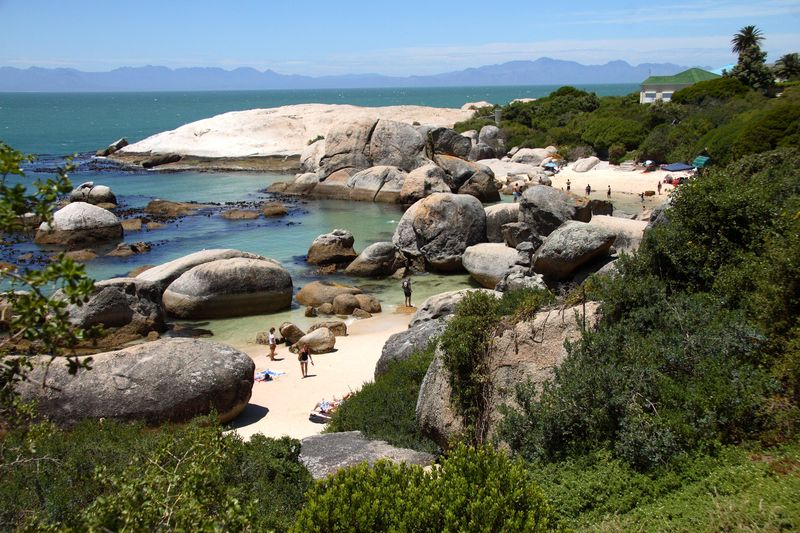 Boulders beach tour